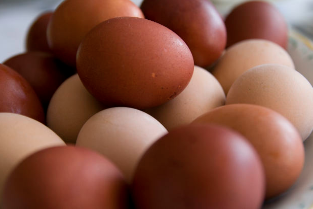 Eggs and Cholesterol: To Avoid or Not Avoid.