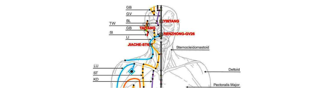 How you can use your meridians by tapping or eft, rubbing or acupuncture for pain, anxiety and allergy relief