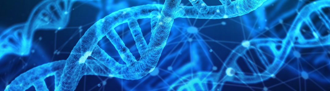Reprogram Your DNA to Support Your Health – Use Epigenetics to Improve