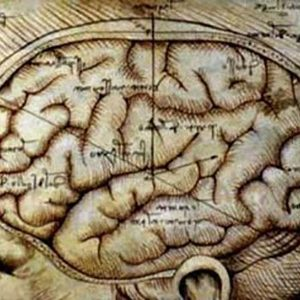 Energize Your Brain – Protect Yourself Against Dementia, Alzheimers or MS